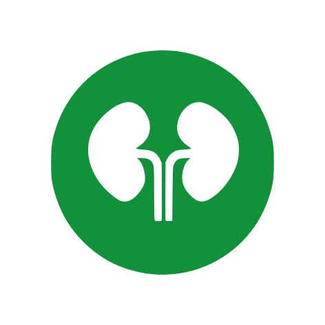 Urologia Mater dei catania
